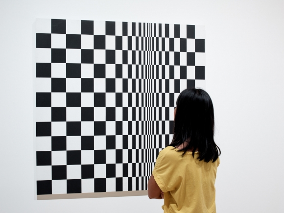 Arts Council Collection: Conservator's View: Movement in Squares by Bridget Riley